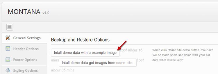 Options to install Montana demo data